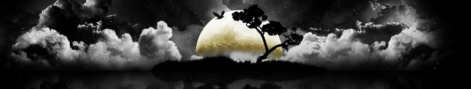 Il mondo Luna Haydn