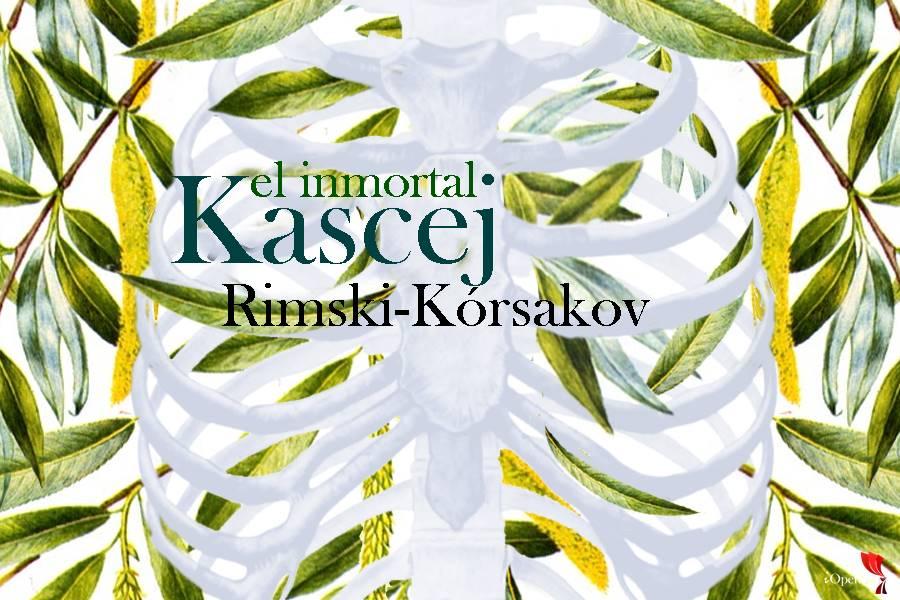 Kascej el inmortal de Rimski-Kórsakov vídeo ópera