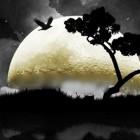 Il Mondo della Luna  Haydn  Montecarlo 2014